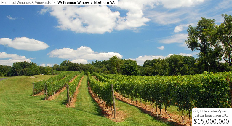 Premier VA Winery