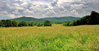 Land for Sale in Virginia
