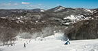 Wintergreen Resort Homes