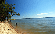Chesapeake Bay Real Estate