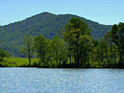 Silver Lake - 300 Acres in Albemarle