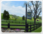 Horse Farms in Richmond over 200 acres