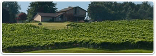 Charlottesville Vineyard Properties for sale