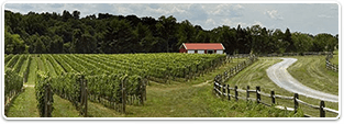 Maryland Wineries for sale