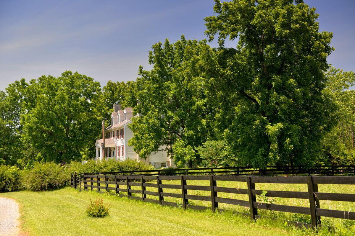 White Walnut Virginia Estates