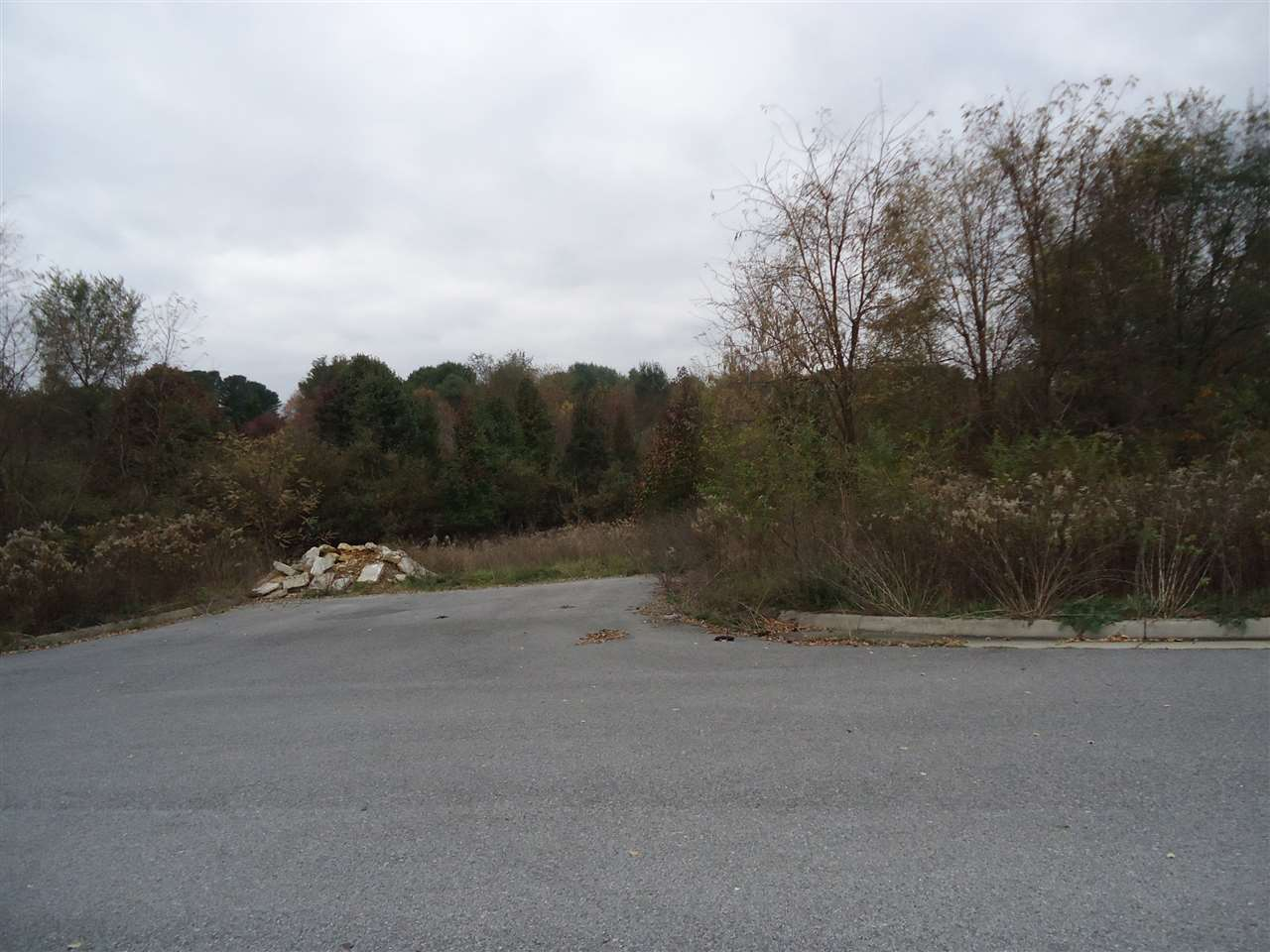 tbd Lot 4 PRATTS RUN LN,WAYNESBORO,Virginia 22980,Land,tbd Lot 4 PRATTS RUN LN,569204 MLS # 569204