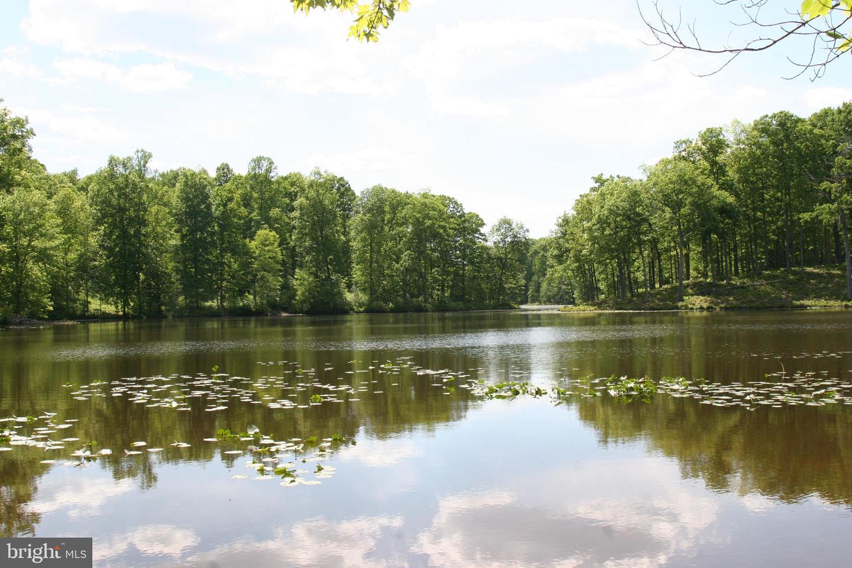 NONE AVALON PLACE, SPOTSYLVANIA, Virginia 22553, ,Farm,For sale,NONE AVALON PLACE,VASP231808 MLS # VASP231808