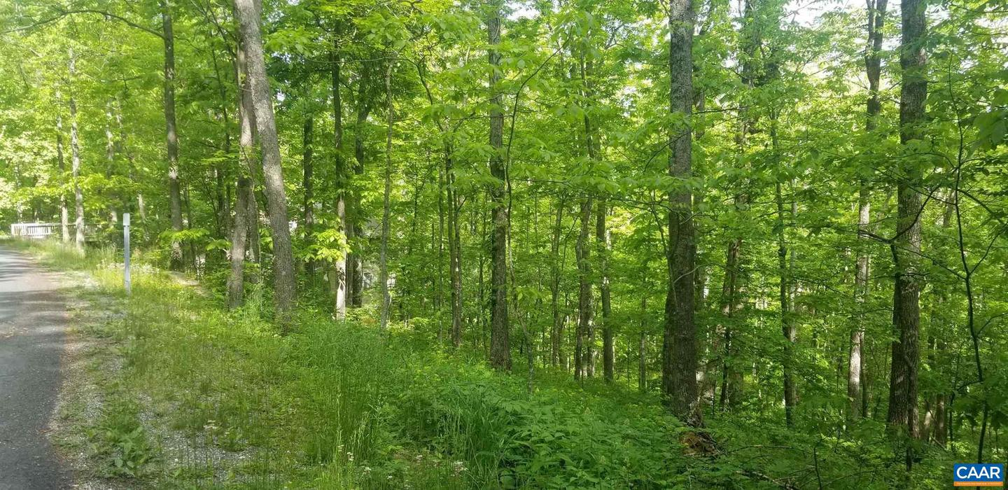 107 FIRTREE DR, ROSELAND, Virginia 22967, ,Land,For sale,107 FIRTREE DR,618133 MLS # 618133